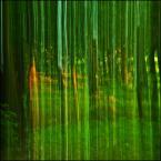 """enoa """"...grasz w zielone?... II"""" (2012-08-15 22:58:38) komentarzy: 16, ostatni: :)"""