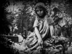 "IV Król ""NЮ № 004"" (2012-08-19 17:27:06) komentarzy: 28, ostatni: klimat :)"