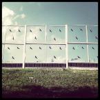 """nomaderro """"pticy leco"""" (2012-08-21 18:43:09) komentarzy: 3, ostatni: :)"""