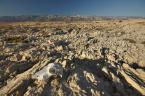 """ceed """"nie ma wody na pustyni"""" (2012-08-23 15:03:45) komentarzy: 18, ostatni: niezwykły krajobraz"""