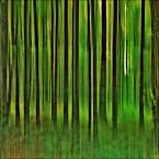 """enoa """"...grasz w zielone?... III"""" (2012-08-24 03:42:10) komentarzy: 26, ostatni: bez względu na to jak to jest wykonane, podoba mi sie."""