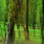 """enoa """"...grasz w zielone?... IV"""" (2012-08-24 03:43:21) komentarzy: 10, ostatni: ...dziękuję :)..."""