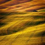 """arturst """"strefa brązu"""" (2012-09-07 21:05:37) komentarzy: 19, ostatni: bardzo ładnie"""