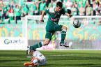 """Dawid Gaszyński """"Śląsk vs GKS Bełchatów"""" (2012-09-24 15:53:36) komentarzy: 4, ostatni: Perfect."""