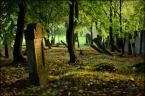 """scots """"by pamięć trwała..."""" (2012-10-04 20:12:41) komentarzy: 7, ostatni: i cisza"""