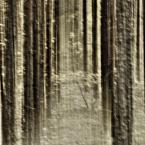 """j2p """"sprawa na drzewo i samotność.."""" (2012-10-13 23:54:21) komentarzy: 3, ostatni: bdb"""