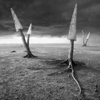"klimat ""Kraj pił"" (2012-10-14 15:45:47) komentarzy: 8, ostatni: hahah invention: niezła teoria :)"