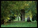 "BiTi ""zaduma"" (2012-10-17 20:21:28) komentarzy: 0, ostatni:"