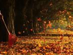 """akartia """""""" (2012-10-20 19:31:28) komentarzy: 7, ostatni: Ktoś tu robi za wiatr :)"""