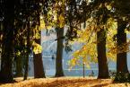 """dreptaq """"październikowa foto migawka"""" (2012-10-22 22:58:55) komentarzy: 7, ostatni: fajne"""