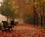 """nightbutterfly """"***"""" (2012-10-23 17:50:21) komentarzy: 8, ostatni: Bardzo ładnie zrobiona jesień w parku :)"""