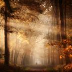 """Sanura """"."""" (2012-10-24 21:26:14) komentarzy: 31, ostatni: Zachwycające!!!"""