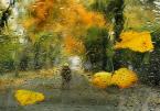 """akartia """""""" (2012-10-30 19:02:26) komentarzy: 5, ostatni: Skleroza... Jest. I widziałam :) Starość nie radość."""