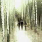 "j2p ""sprawa na sen, spacer i brzozy"" (2012-11-01 23:16:13) komentarzy: 11, ostatni: ... !!! ..."