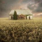 """klimat """""""" (2012-11-12 10:53:22) komentarzy: 14, ostatni: eternit się zachował..."""