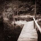 """zippuro """"Hobbitowy las"""" (2012-11-13 21:58:59) komentarzy: 3, ostatni: dziękować"""