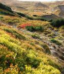 """Einsteiger """"kondracka przełęcz"""" (2012-11-17 17:05:18) komentarzy: 3, ostatni: Dzieki :)....za dobre rady..."""