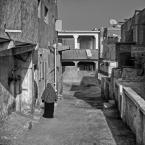"""Paddinka """""""" (2012-11-22 10:24:10) komentarzy: 12, ostatni: Hrabio - EL Quesir"""