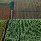 """asiasido """"pola lubelskie 2"""" (2012-11-27 21:52:29) komentarzy: 29, ostatni: bardzo ładne"""
