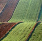 "asiasido ""pola lubelskie 3"" (2012-11-28 20:13:24) komentarzy: 10, ostatni: fale... :-)"