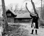 """Adam Falkowski """"Adwentowe granie ..."""" (2012-12-03 19:28:41) komentarzy: 5, ostatni: elephantcik"""