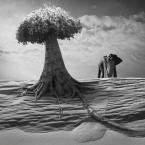 """klimat """""""" (2012-12-05 12:17:58) komentarzy: 5, ostatni: słoń winien mieć podniesioną trąbę. ;)"""