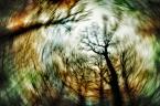 """Arek Kikulski """"senny świat"""" (2012-12-13 20:36:48) komentarzy: 3, ostatni: Pomysłowo"""