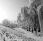"""dreptaq """"grudniowa fotka"""" (2012-12-21 01:02:50) komentarzy: 11, ostatni: piekne :)"""