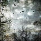 """Arek Kikulski """"czas pożegnań 2"""" (2012-12-28 14:05:38) komentarzy: 1, ostatni: ciekawy efekt"""