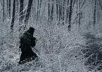 "asiasido ""zaplątana"" (2013-01-09 18:20:35) komentarzy: 14, ostatni: baba-jaga i tyle..."