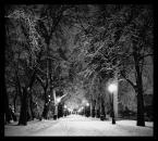 """007areka """"bw  RZ"""" (2013-01-22 23:13:40) komentarzy: 10, ostatni: Fajny klimat..."""