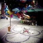 """hunting_bears """""""" (2013-01-26 10:01:13) komentarzy: 2, ostatni: pieseczka z balonem;)"""
