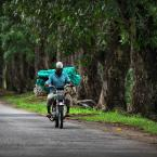 "Meller ""Easy Rider"" (2013-01-26 21:45:38) komentarzy: 4, ostatni: fajne"