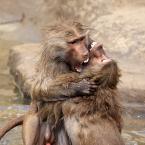 """Marta Posyłek """""""" (2013-01-27 20:01:52) komentarzy: 12, ostatni: hot kiss :)"""