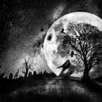 """Arek Kikulski """"tańcząc w ciemności"""" (2013-01-31 20:55:35) komentarzy: 19, ostatni: ciekawa praca"""