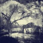 """Arek Kikulski """"świat nieznany..."""" (2013-02-04 20:43:12) komentarzy: 7, ostatni: Przez Ludzi opuszczone...i trwają tak  sobie, nierozłączni, drzewo bezlistne i zapomniany domek....Obróbką doskonale podkreśliłeś mój odbiór tego zdjęcia. Podoba mi się!"""