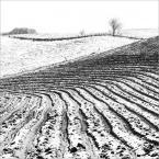 """policeman """"zima"""" (2013-02-19 11:45:48) komentarzy: 13, ostatni: bardzo mi się podoba!"""