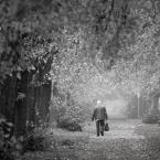 """arturst """"droga do zatracenia"""" (2013-03-10 08:53:19) komentarzy: 11, ostatni: zdjęcie mi się podoba, tytuł niekoniecznie..."""