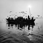 """Meller """"Oświecenie.."""" (2013-03-18 03:42:22) komentarzy: 10, ostatni: Wracam. Obłąkańczo piękny, niezwykły obraz."""