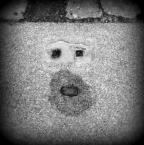 """halcia007 """"chłopek roztropek"""" (2013-03-22 08:57:31) komentarzy: 25, ostatni: Wypatrzone! Doceniam."""