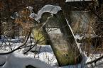 """Zbigniew Fidos """"kirkut w Łodzi"""" (2013-04-03 13:49:45) komentarzy: 2, ostatni: groby żydowskie, ich się nie sprząta, nie myje, nie czyści, nie prostuje, takie są jakie są... i takie maja być..."""