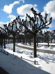 """baha7 """"Sopot"""" (2013-04-03 22:25:50) komentarzy: 2, ostatni: drzewka fajne, ale samo oto...hmmm..."""
