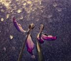 """meczata """"ostatni taniec"""" (2013-05-12 07:27:04) komentarzy: 7, ostatni: to masz rewelacyjne!"""