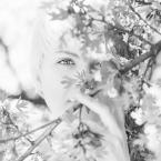 """Bartosz Wojciechowski """"A."""" (2013-05-22 23:11:25) komentarzy: 8, ostatni: Taka wiosna! Bardzo piękna jest... :)"""