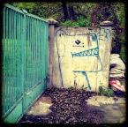 "nomaderro ""piesek pies"" (2013-05-25 11:53:23) komentarzy: 0, ostatni:"