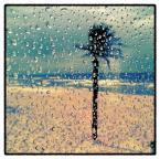 """nomaderro """"lód w tropikach"""" (2013-07-02 20:33:07) komentarzy: 6, ostatni: :)"""