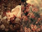 """SNowicka """"xx"""" (2013-07-11 22:15:30) komentarzy: 7, ostatni: bardzo ładna kolorystyka...."""