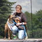 """IV Król """"na psa urok"""" (2013-08-18 09:05:40) komentarzy: 1, ostatni: miejmy nadzieję ze znajdzie dom"""