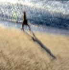 "monavida ""spacer z cieniem"" (2013-08-20 20:48:29) komentarzy: 13, ostatni: super"