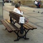 """miastokielce """"Ul. H. Sienkiewicza; Kielce"""" (2013-09-02 16:46:31) komentarzy: 0, ostatni:"""